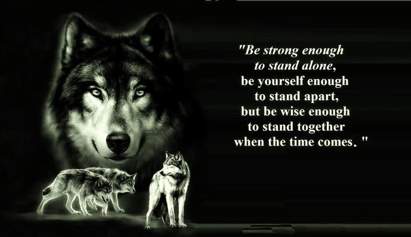 All About Wolf Spirit Animal Lonerwolf Kidskunst Info