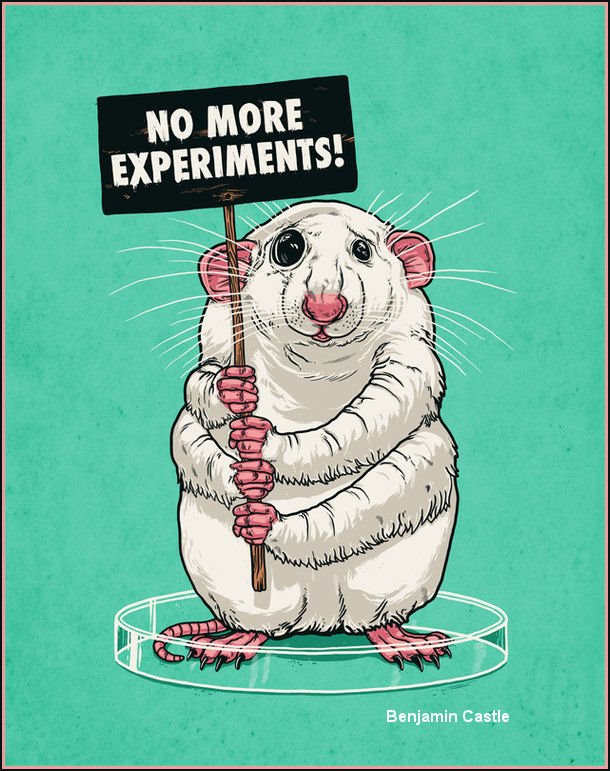 Why is animal testing bad?