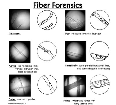 Forensic Science on emaze