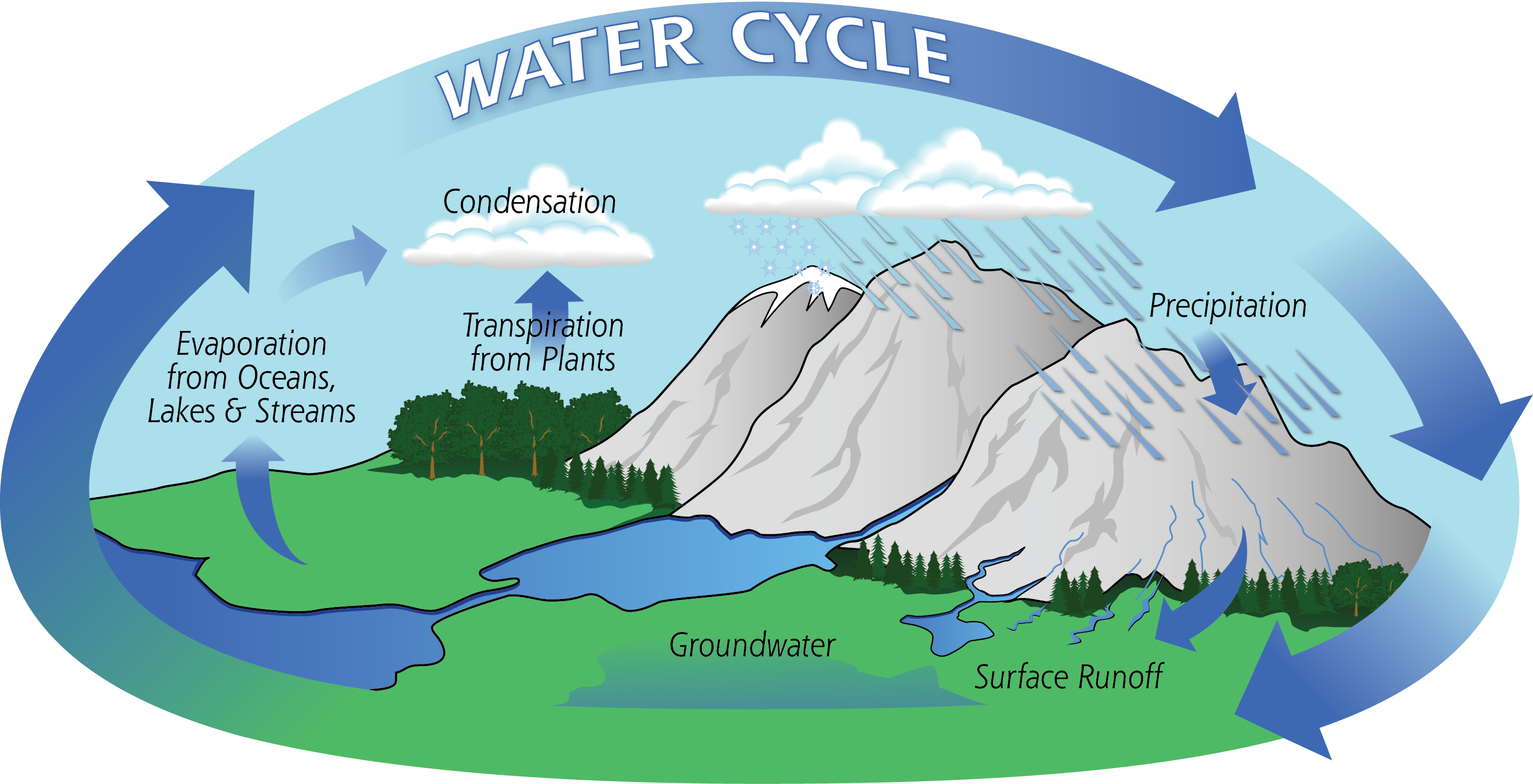 THE WATER CYCLE. on emaze