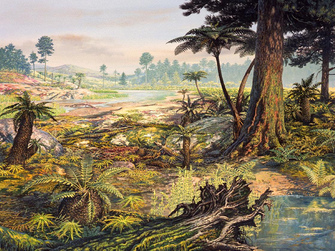 Jurassic period plants and animals - photo#29