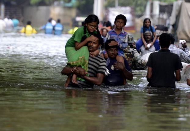 What drives urbanisation in Tamil Nadu