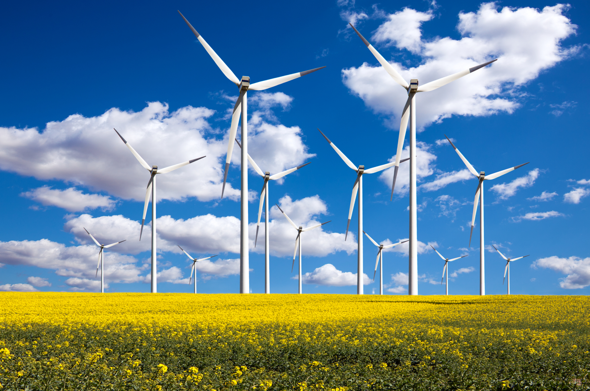 Worksheet Alternative Natural Resources alternative energy sources on emaze