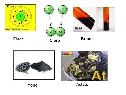 Grupo 17 o on emaze debido a que una rbita externa completa necesita ocho electrones cada uno de estos elementos necesita slo un electrn adicional para llenar la rbita urtaz Gallery
