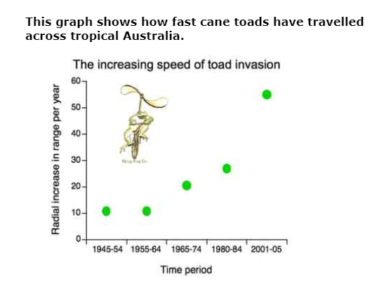 Cane Toads And The Environment On Emaze
