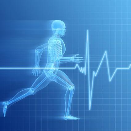 Resultado de imagen para energia del cuerpo humano