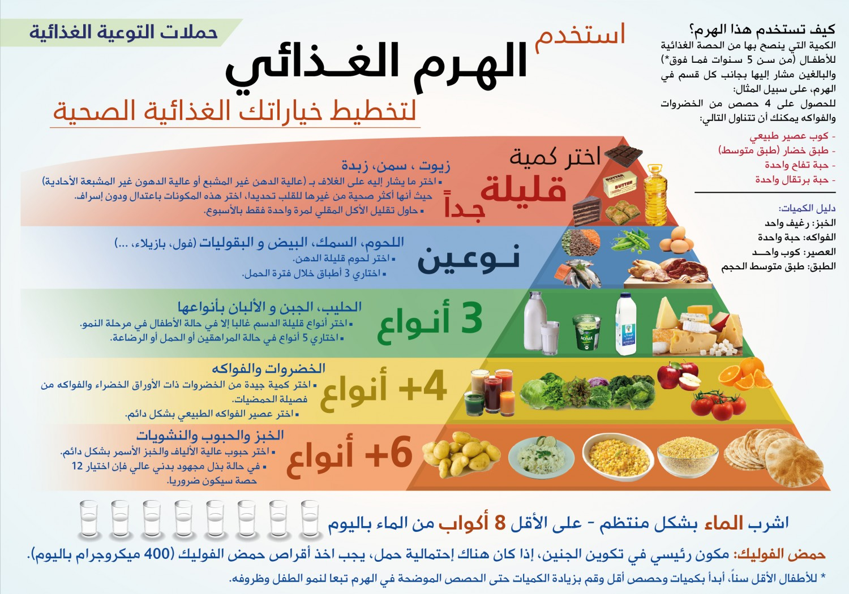 معلومات عامة الهرم الغذائي 2