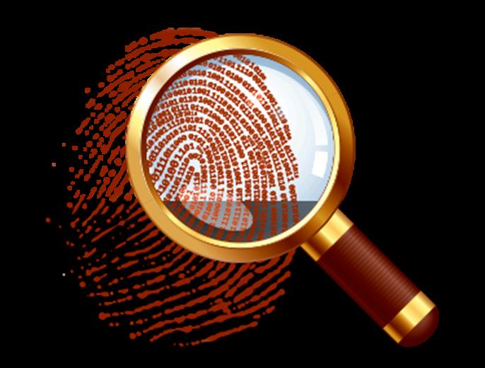 Resultado de imagen de Auditoría forense
