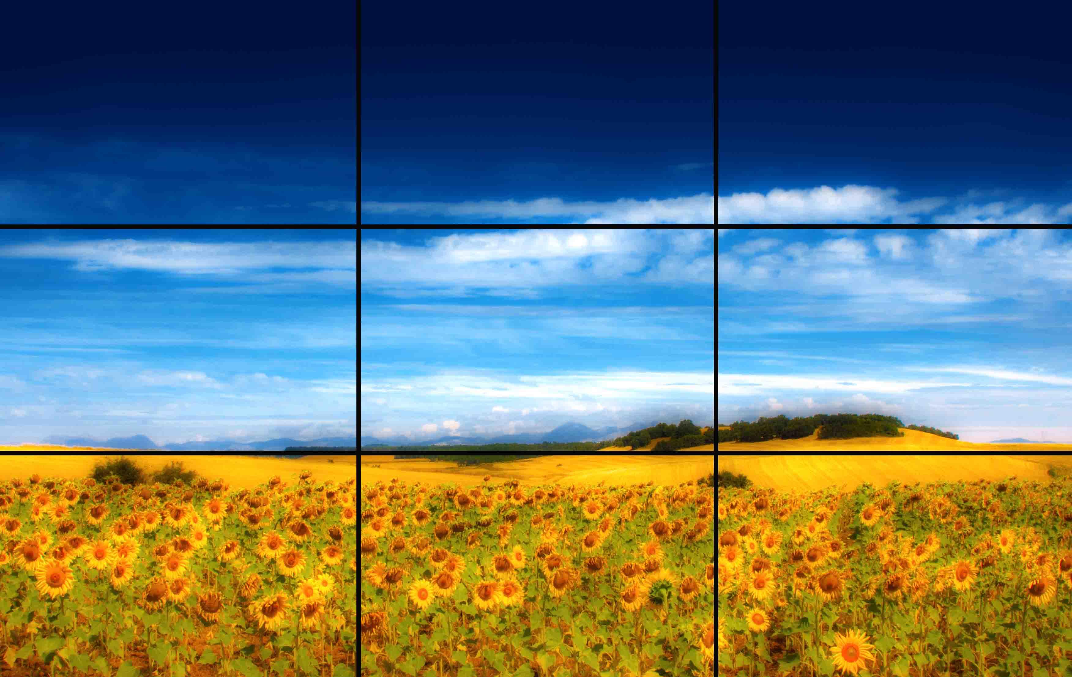 как настроить линии горизонта в фотоаппарате если