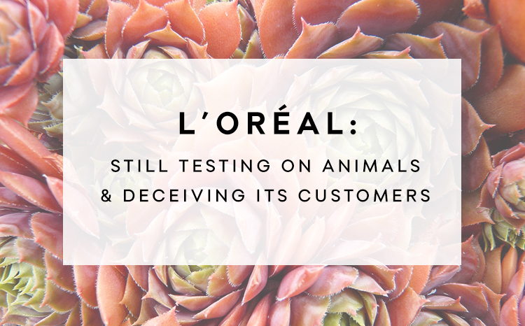 Image result for loreal animal testing