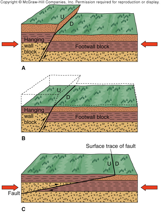 Chapter 12 Earthquakes. What is an earthquake? Movements of the ...