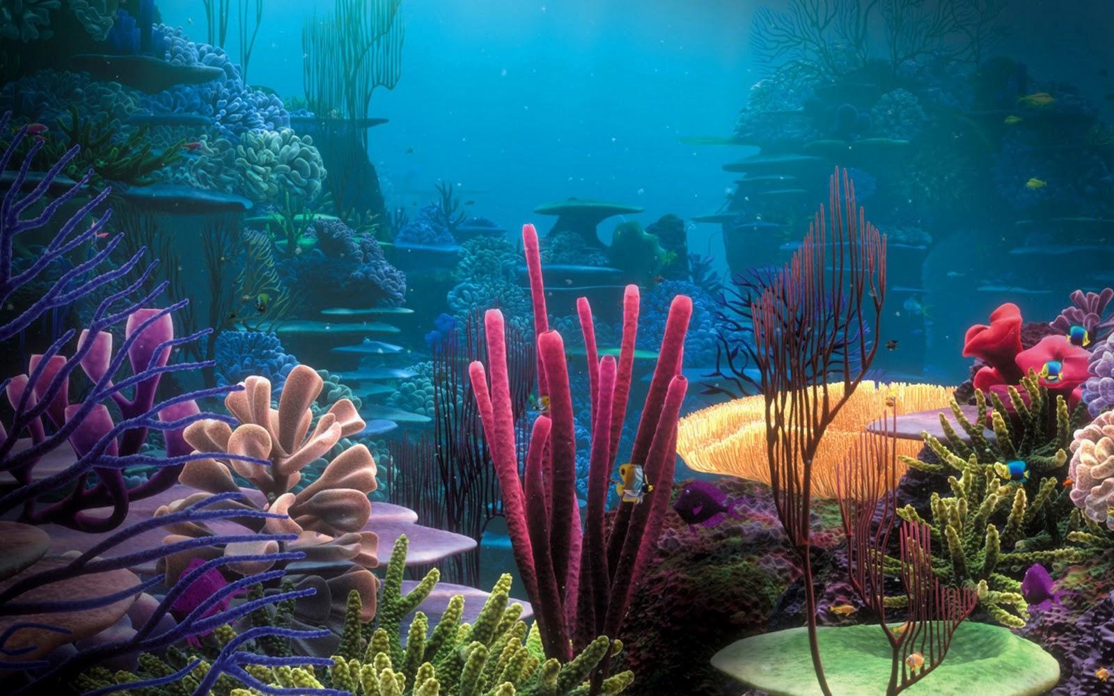 aQUATIC & mARINE OCEAN BIOME   Sutori