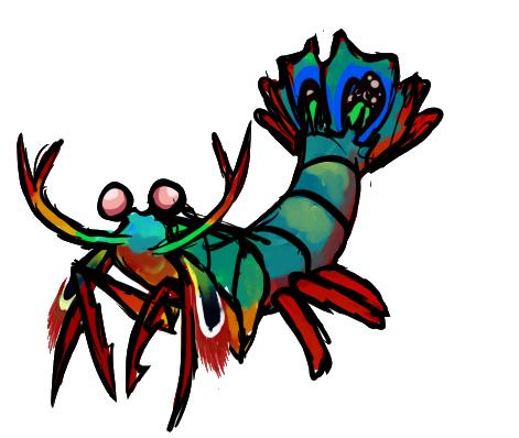 the mantis shrimp rh emaze com Sabor Tooth Tiger Clip Art Giraffee Clip Art