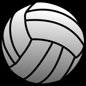 Resultado de imagen de volleyball balon png