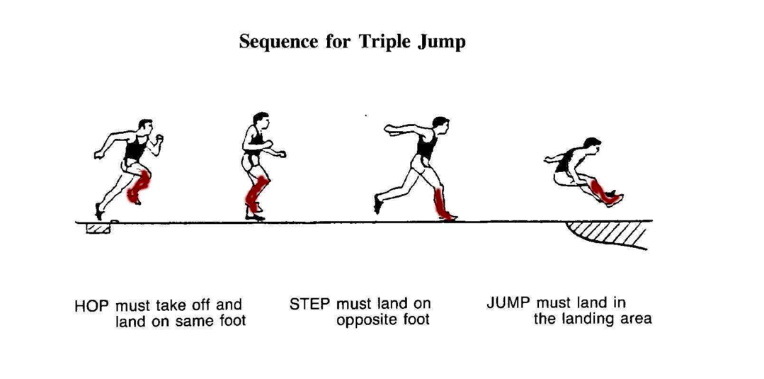 triple jump biomechanics essay Scientific service and research biomechanics of triple jump bing yu, phd center for human movement science the university of north carolina at chapel hill.